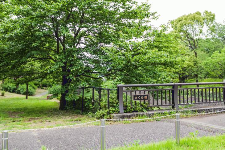 zanborigawa2-24.jpg