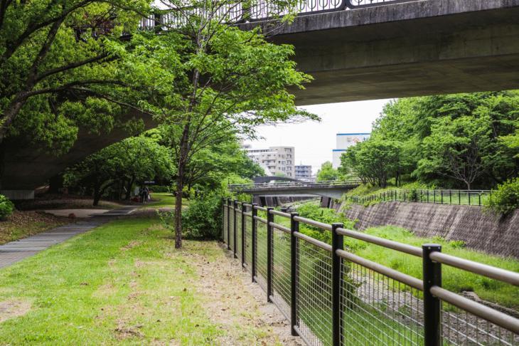 zanborigawa2-25.jpg