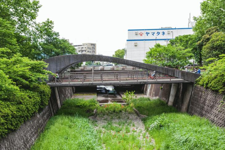 zanborigawa2-26.jpg
