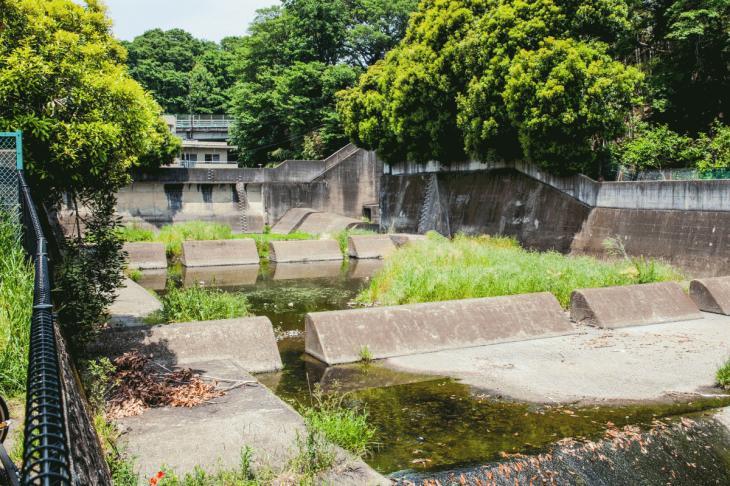 zanborigawa2-36.jpg