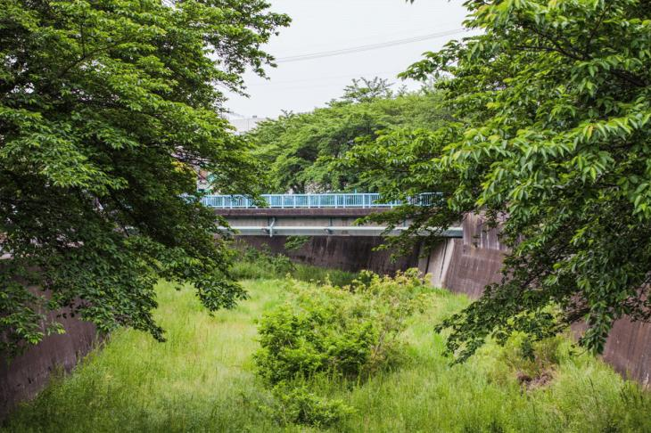 zanborigawa2-9.jpg