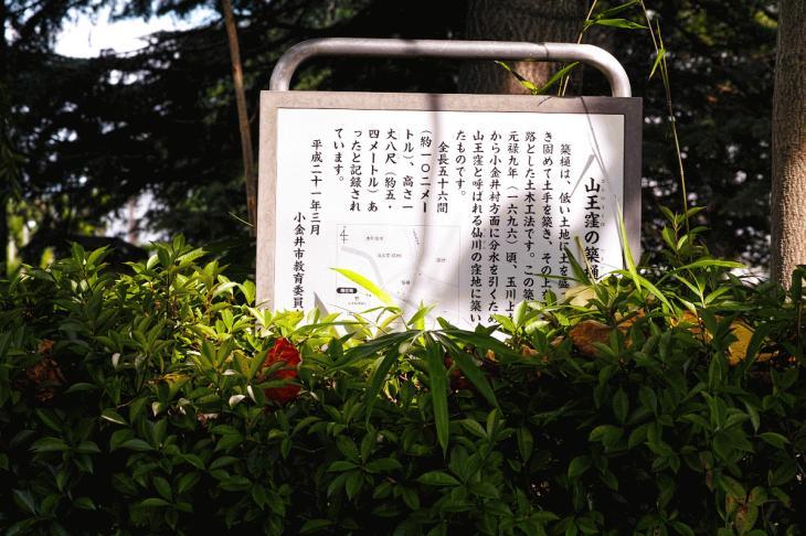 160626(仙川-10).jpg