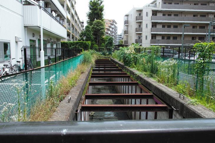 160626(仙川-101).jpg