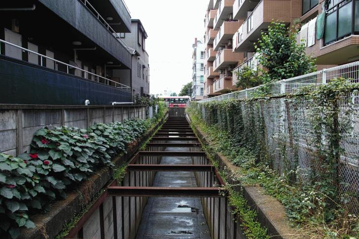 160626(仙川-102).jpg