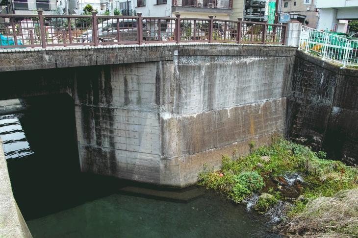 160626(仙川-105).jpg