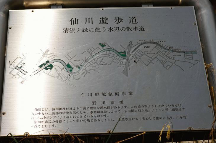 160626(仙川-108).jpg