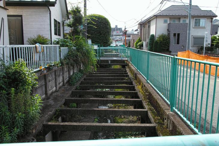 160626(仙川-11).jpg