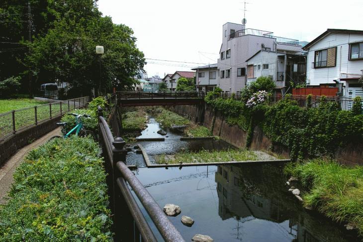 160626(仙川-112).jpg
