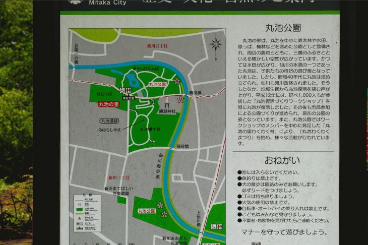 160626(仙川-113).jpg