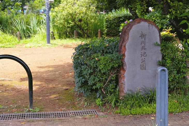 160626(仙川-114).jpg