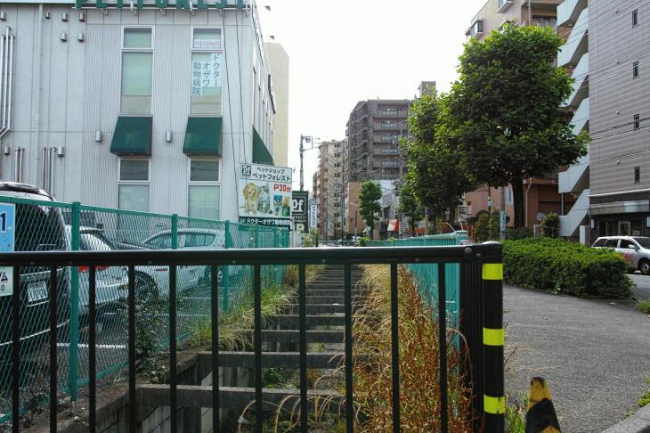 160626(仙川-12).jpg