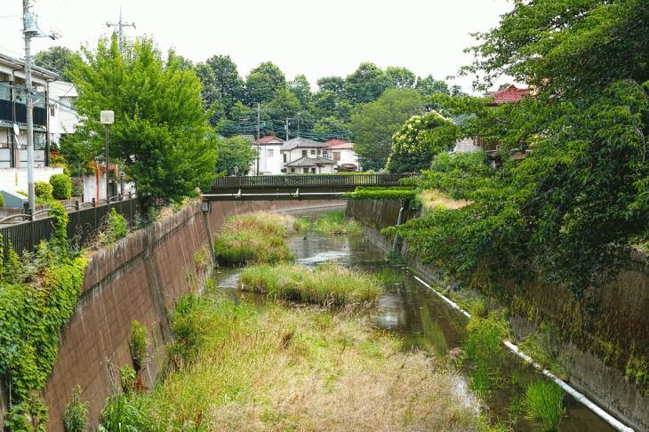 160626(仙川-121).jpg