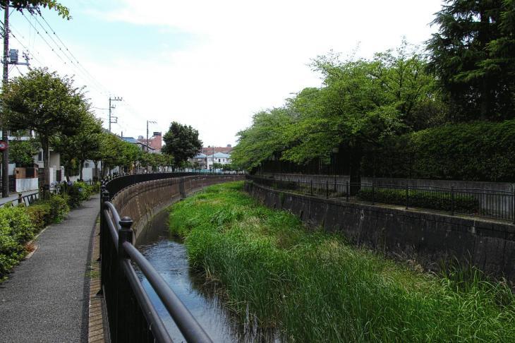 160626(仙川-128).jpg