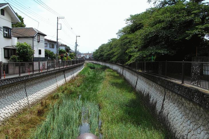 160626(仙川-129).jpg