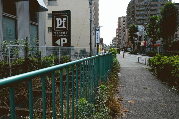 160626(仙川-13).jpg