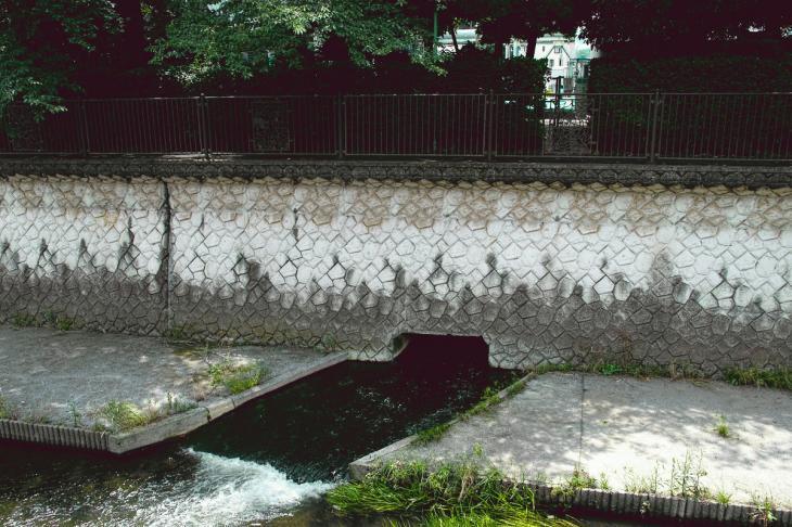 160626(仙川-130).jpg