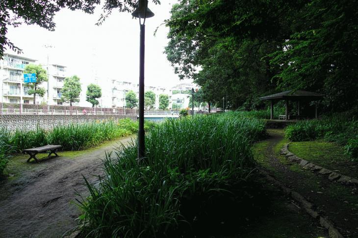160626(仙川-134).jpg