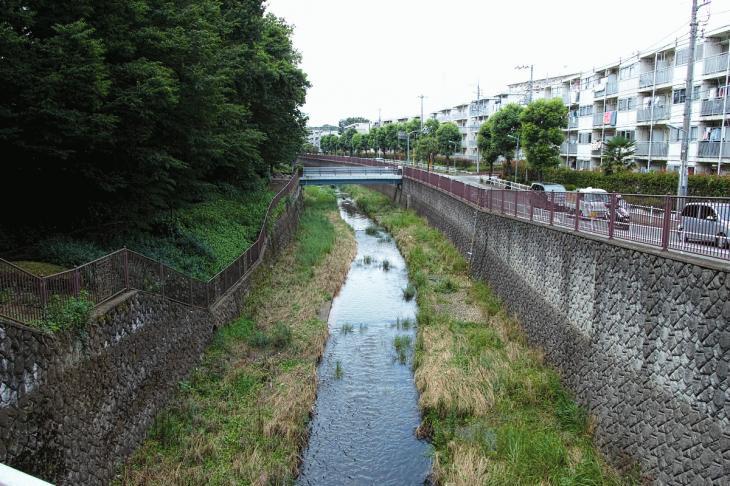 160626(仙川-136).jpg
