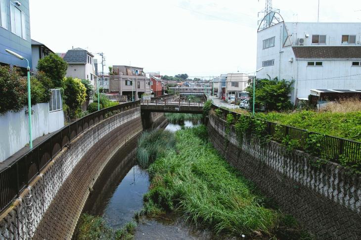 160626(仙川-137).jpg