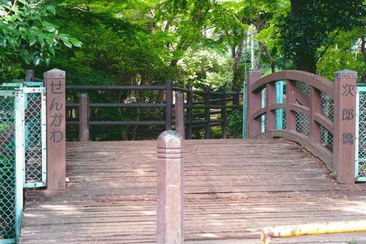 160626(仙川-24).jpg