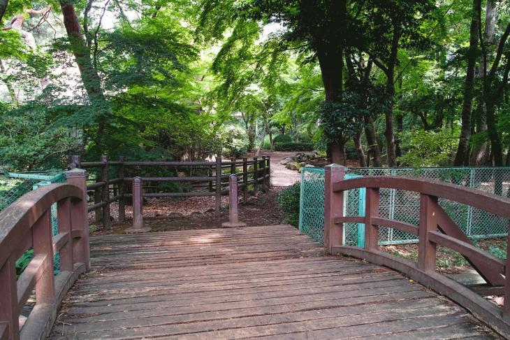 160626(仙川-27).jpg