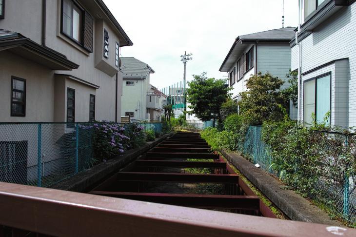 160626(仙川-35).jpg