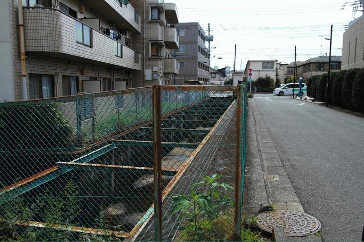 160626(仙川-37).jpg