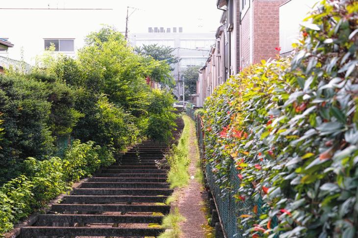 160626(仙川-39).jpg