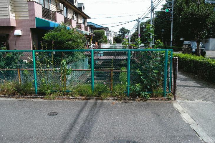 160626(仙川-41).jpg