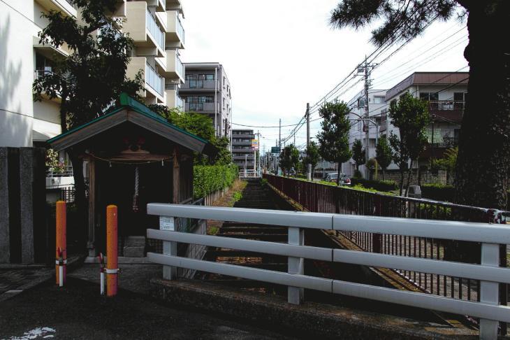 160626(仙川-42).jpg