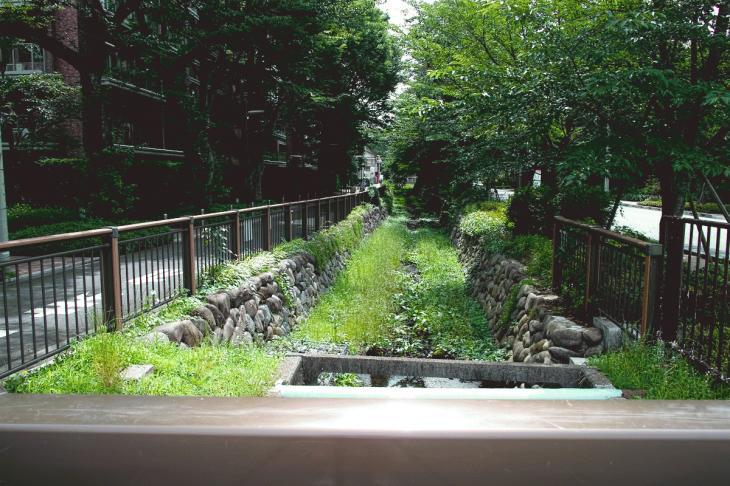 160626(仙川-48).jpg