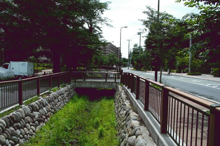 160626(仙川-49).jpg