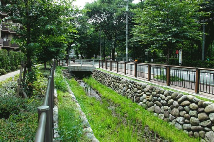 160626(仙川-51).jpg