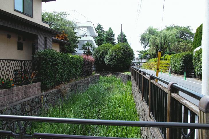 160626(仙川-61).jpg