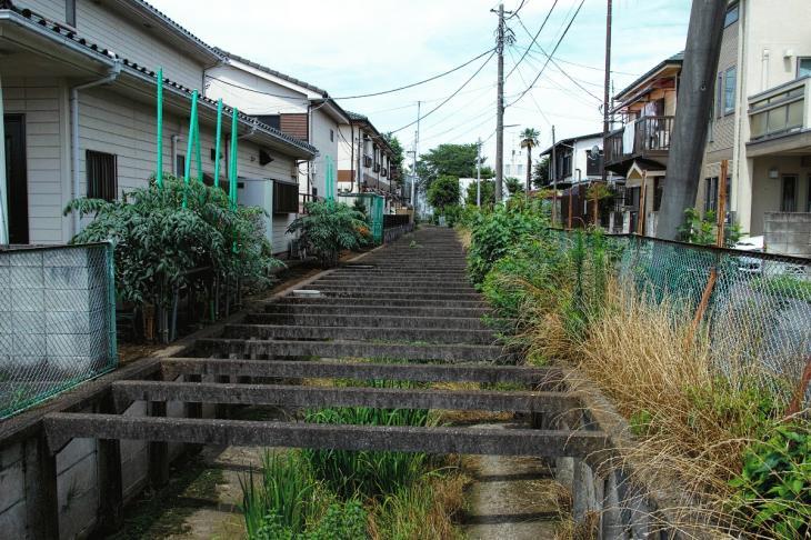 160626(仙川-62).jpg