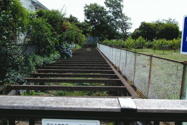 160626(仙川-63).jpg