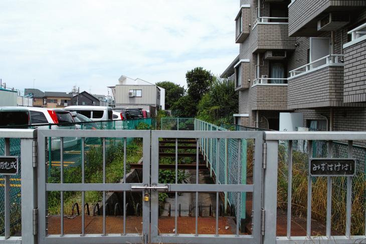 160626(仙川-67).jpg