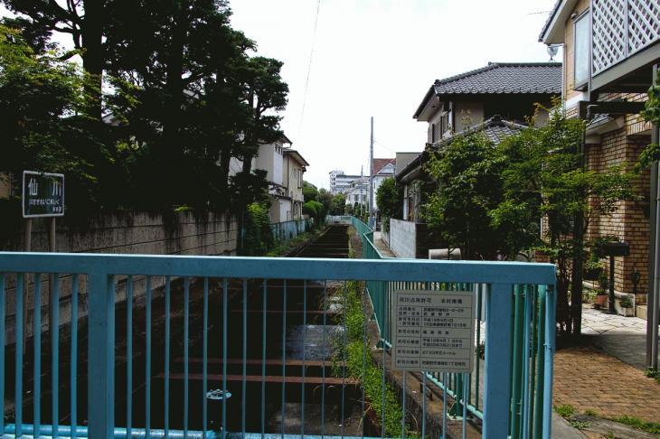 160626(仙川-73).jpg