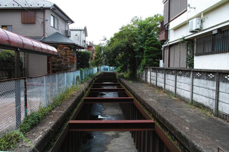 160626(仙川-74).jpg