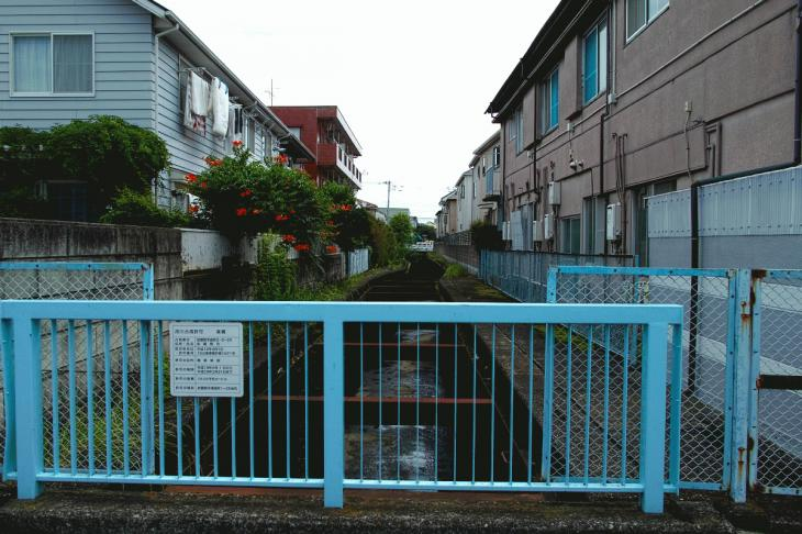 160626(仙川-75).jpg