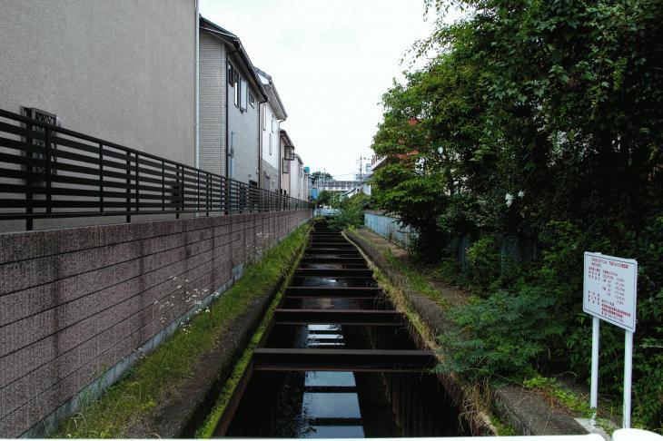 160626(仙川-76).jpg