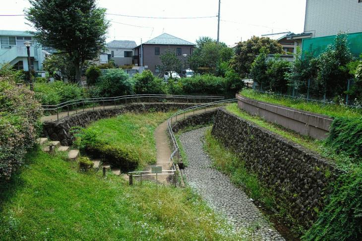 160626(仙川-81).jpg