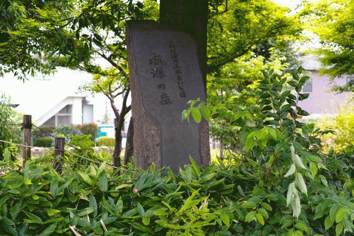 160626(仙川-82).jpg