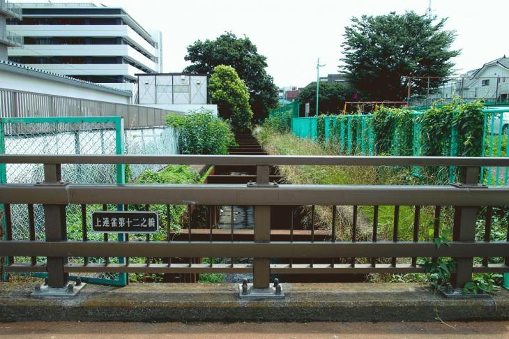 160626(仙川-86).jpg