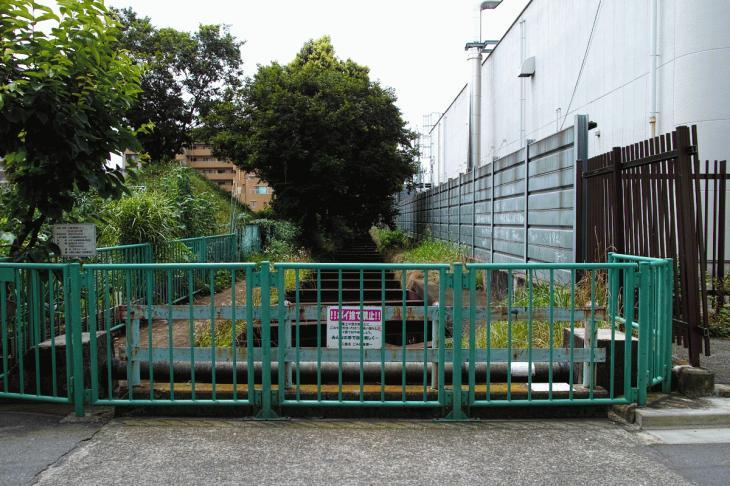 160626(仙川-89).jpg