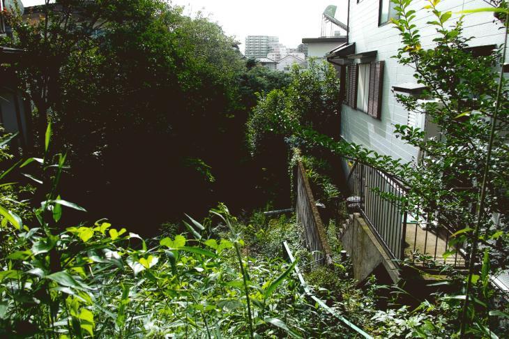 160626(仙川-9).jpg