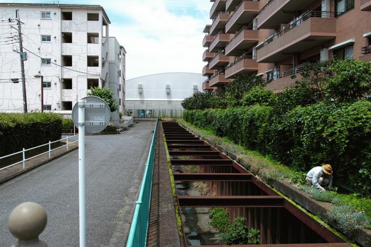 160626(仙川-91).jpg