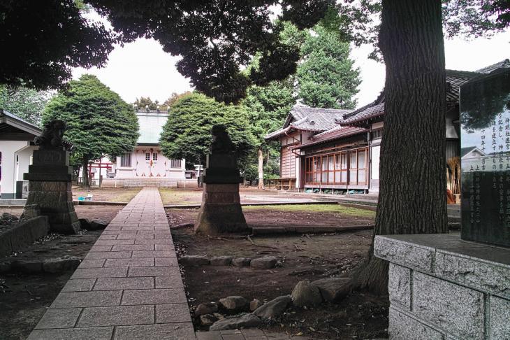 160703(仙川-10).jpg