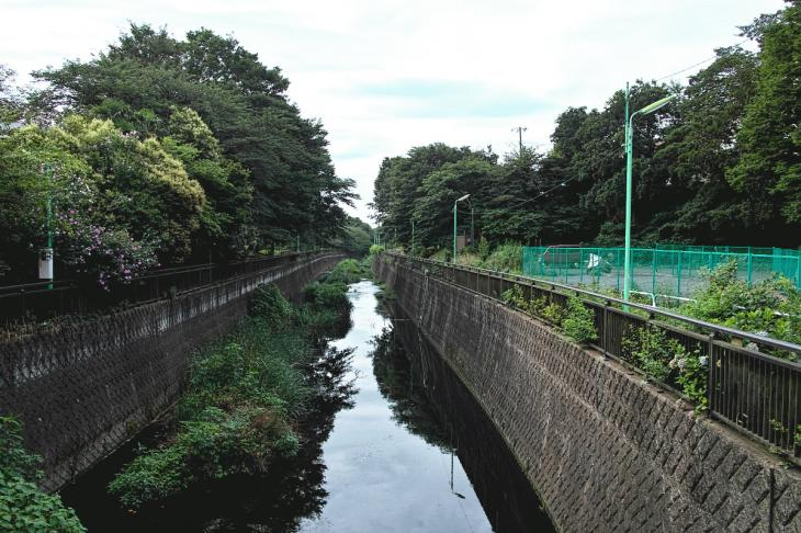 160703(仙川-12).jpg