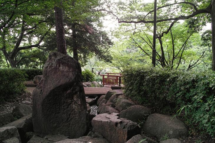 160703(仙川-14).jpg
